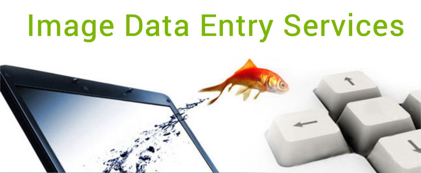 image-data-entry-services1